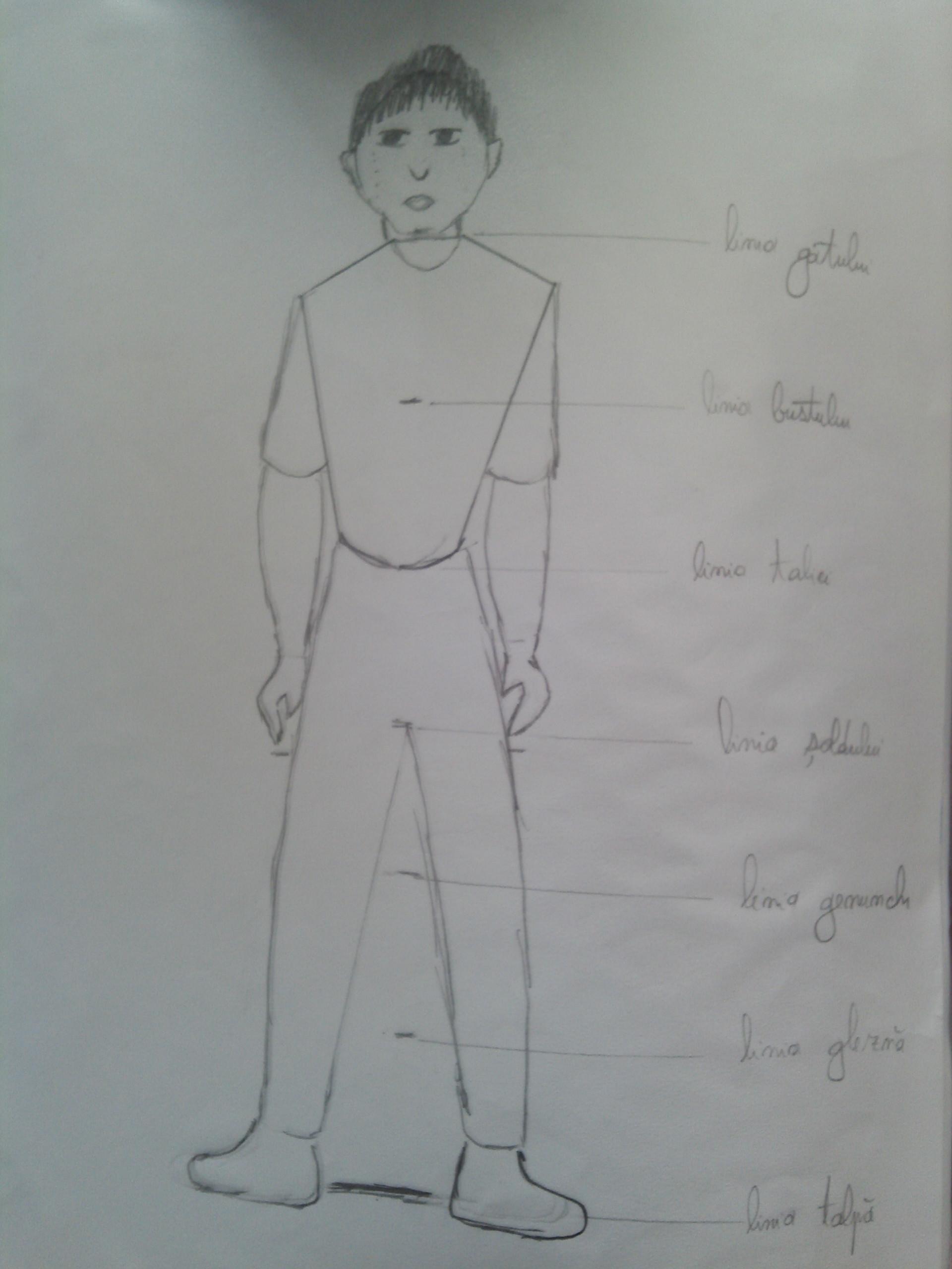 Corpul uman desen