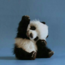 PandaArii